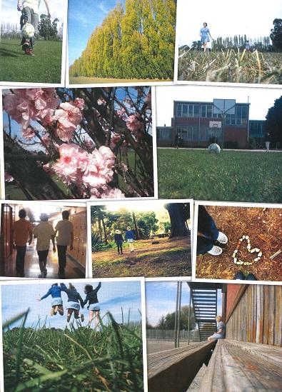 Latrobe High School - Home